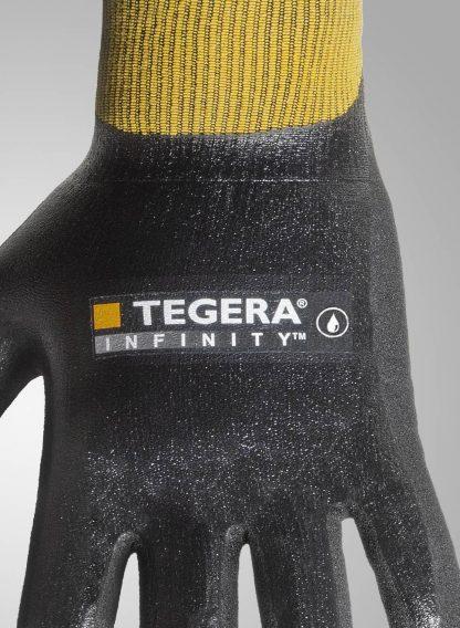 Tegera 8804